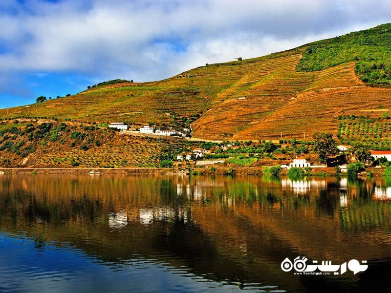 دره دورو، پرتقال (Douro Valley, Portugal)