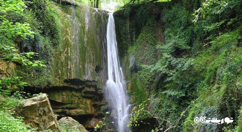 جنگل هیرکانی شهرستان مازندران استان آمل