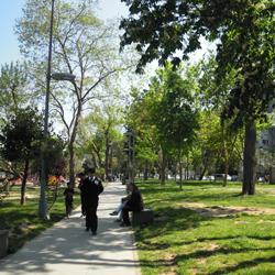 پارک ببک