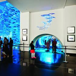 آکواریوم و باغ وحش زیر آبی دبی