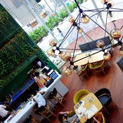 رستوران توجو