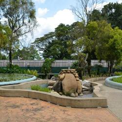 باغ هبیسکوس کوالالامپور (هبیسکوس گاردن)