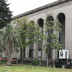 موزه باستان شناسی باتومی