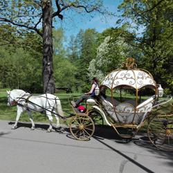 مرکز فرهنگی و باغ تفریحی کیروف