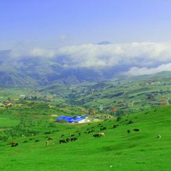ییلاقات اسپیلی دیلمان (روستای اسپیلی)