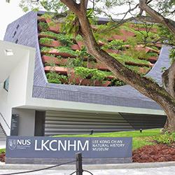 موزه تاریخ طبیعی لی کونگ چیان