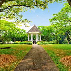 باغ های گیاه شناسی سنگاپور