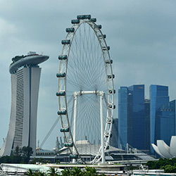 پرنده سنگاپور (چرخ و فلک سنگاپور)