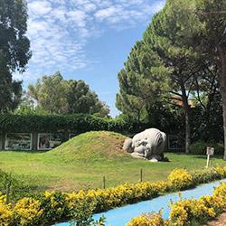 پارک حیات وحش ساسالی - چیگلی