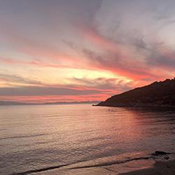 ساحل پاموجاک