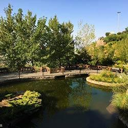 پارک آبشار