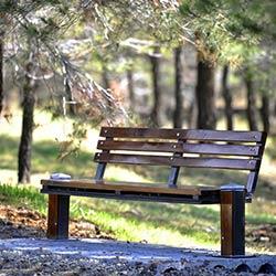 پارک جنگلی یاس فاطمی