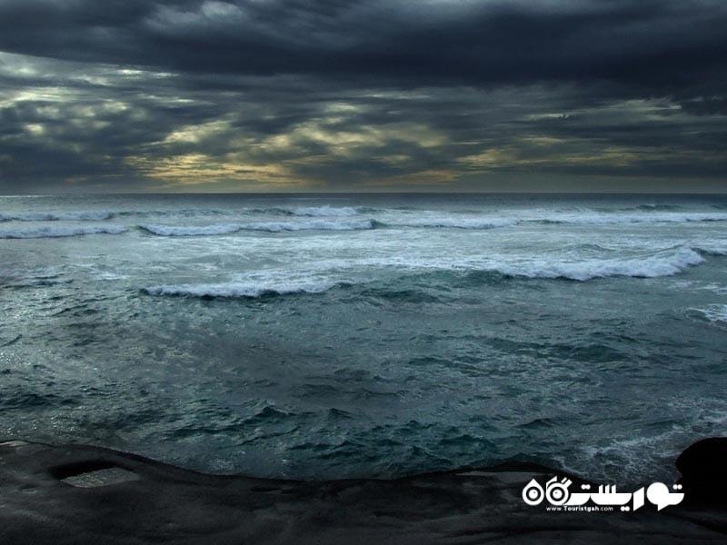 ساحل شن های سیاه میوریوای (Muriwai Black Sand Beach)