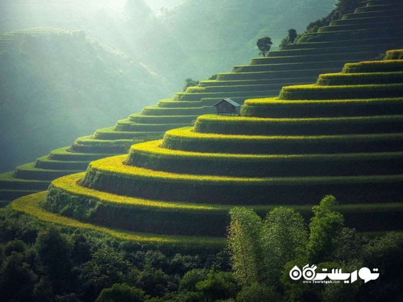 5- تراسهای برنج کاری جاتیلّویح (Jatiluwih Rice Terraces)