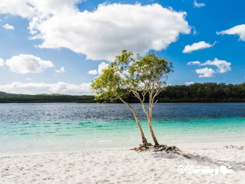 50 کاری که باید در طول سفر به استرالیا و نیوزیلند انجام دهید