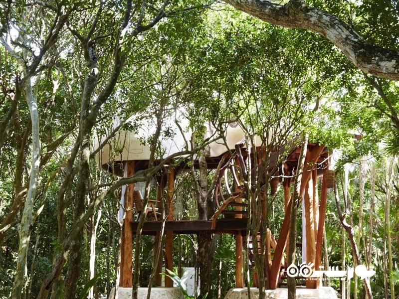 تولوم (Tulum) در کشور مکزیک