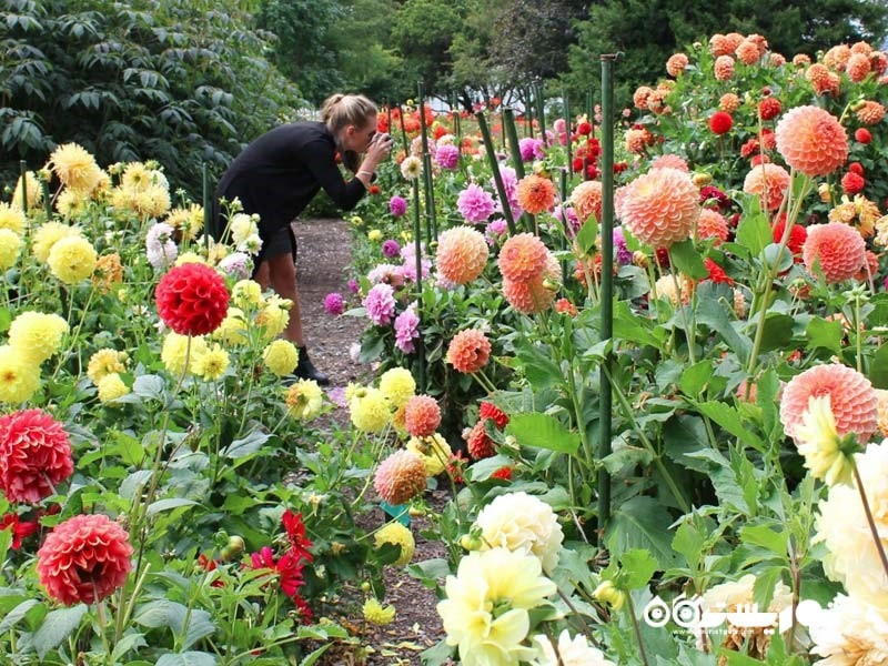 باغ گیاهشناسی کِرایست چِرچ