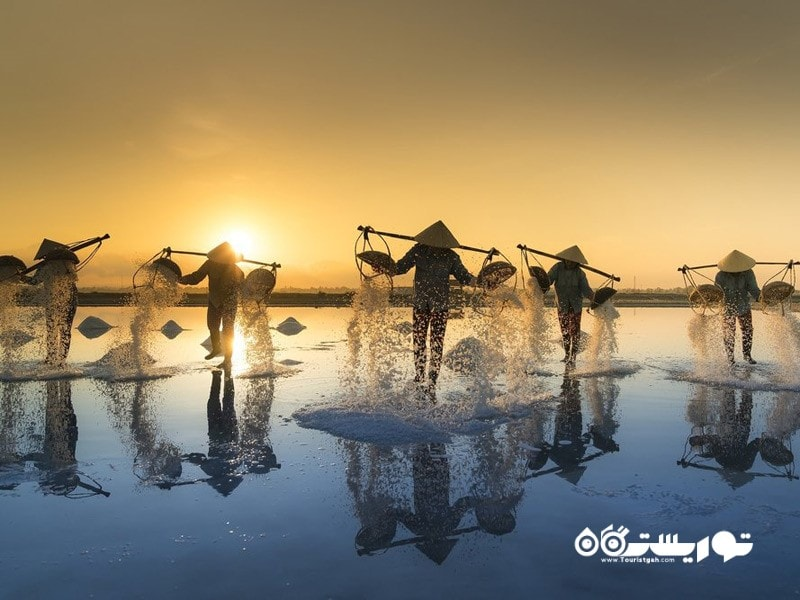 9- مزارع نمک ویتنامی