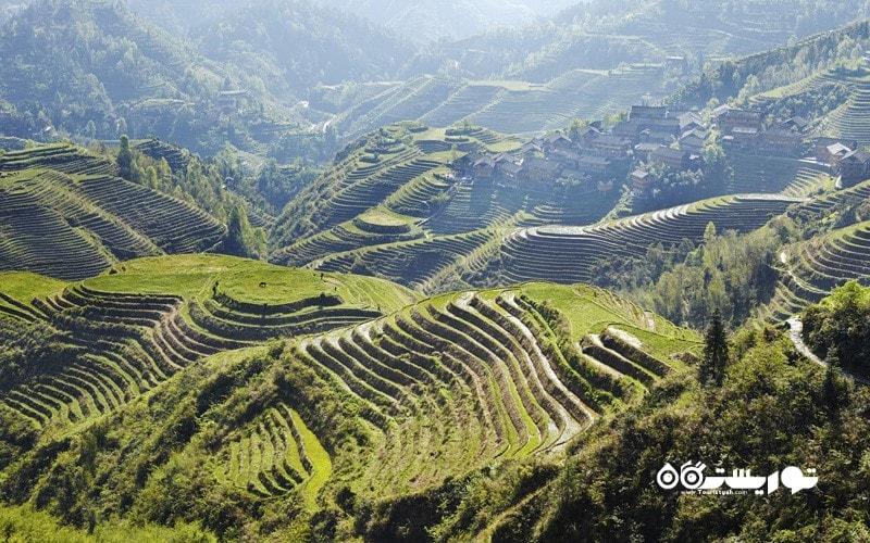 12. پیاده روی بر فراز شالیزارهای لانگجی (Longji)، چین