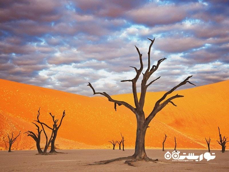 پارک نامیب نامکِلافت، نامبیا