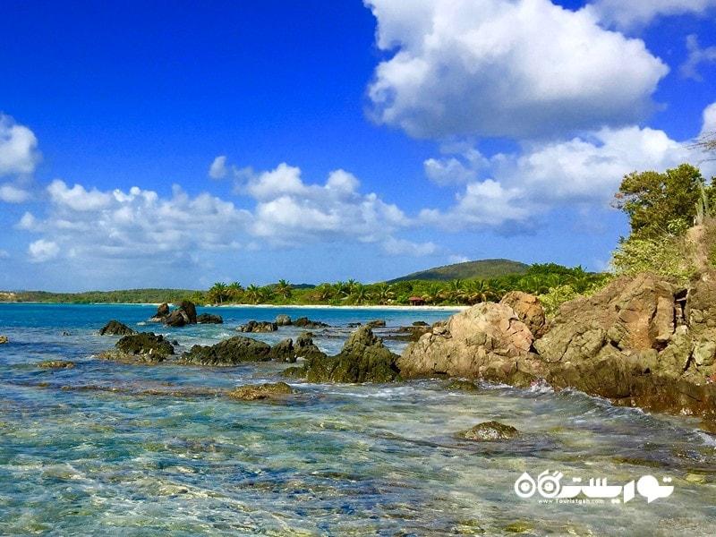 4. وییِکِس جاذبه گردشگری پورتوریکو
