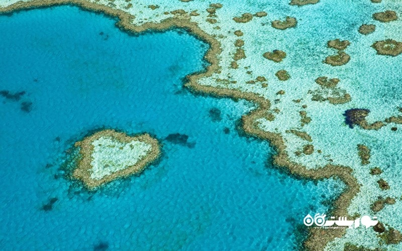 11. دیواره بزرگ مرجانی را با هلیکوپتر تماشا کنید، استرالیا